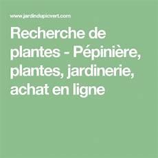 recherche de plantes p 233 pini 232 re plantes jardinerie