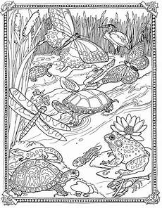 free coloring pages pond animals 17411 jan brett free mossy coloring page pad pond so pretty coloring pages