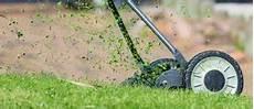 Feuchten Rasen Mähen - hausmittel gegen schnecken im garten erfahrungen tipps