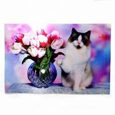 Poster Gambar Kucing 3 Dimensi