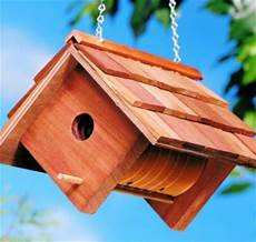 vogelhaus selber bauen diy bauanleitung