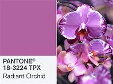 paint color of year 2014 pantone s radiant orchid is 2014 s color of the year