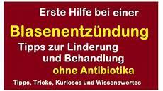 blasenentzündung was hilft blasenentz 252 ndung lindern hausmittel ohne medikamente was