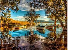 Lake, Boat, Cane, Background Hd Quality Desktop Wallpaper