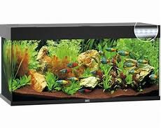 aquarium juwel 240 mit led beleuchtung pumpe filter
