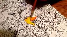 how to use colored pencils on adult coloring books youtube