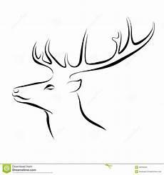 cerf dessin facile of deer ink line stock vector illustration of
