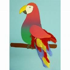 Papagei Basteln Vogels Knutselidee 235 N