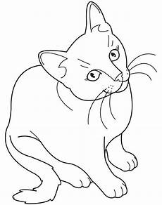 Aquarell Malvorlagen Tiere Realistic Cat Coloring Pages Coloring Pages Hd For