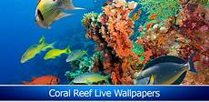 Amazon Com Beach Live Wallpaper Amazon Com Coral Reef Live Wallpapers Appstore For Android