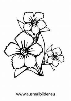Ausmalbilder Blumen Pdf Ausmalbilder Bl 252 Ten Blumen Malvorlagen Ausmalen