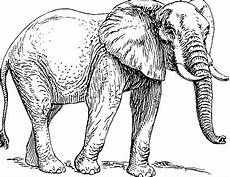 Afrikanische Muster Malvorlagen Zum Ausdrucken Elefant Malvorlage Vorlage Elefant Zum Ausdrucken