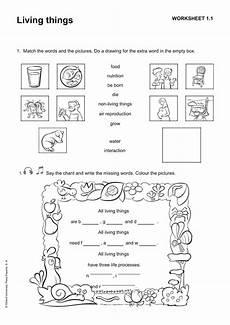 science worksheet living things 12282 la clase de mabel fichas de repaso de science tema 1 living things