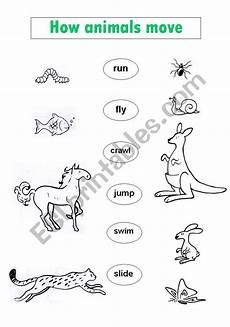 animal movement worksheets 13953 how animals move esl worksheet by virginiajimenez