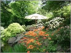 Rote Ameisen Im Garten Pflanzen Garten House Und Dekor