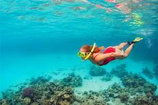 amazing island snorkelling locations the great barrier reef fitzroy island