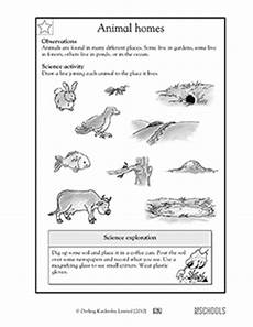 animals around us worksheet for grade 1 14242 1st grade 2nd grade kindergarten science worksheets animal homes greatkids