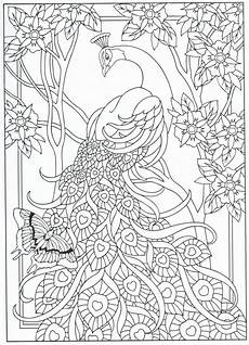 peacock coloring page for adults 7 31 more crafting tips