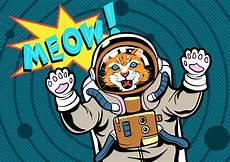 bilder pop cat pop free vectors clipart graphics