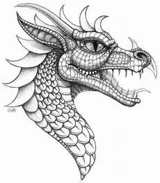 Ausmalbilder Drachen Erwachsene Drachen Vorlage Zum Zeichnen Drachen Malen Drachen