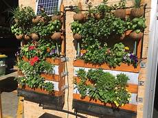 To Plant Vertical Garden by Space Plant Vertical Garden Teleplantathic