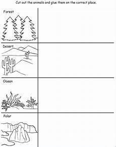 plants habitat worksheets 13564 pin by vicki elbon on classroom ideas animal habitats