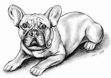 barney franz 246 sische bulldogge hund haustier