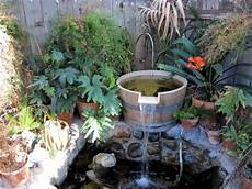 Sources And Accumulation Of Water In The Garden Itself
