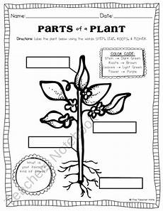 types of plants worksheets for grade 2 13744 parts of a plant worksheet plant activities kindergarten science science lessons