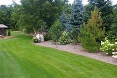 evergreen landscaping pictures garden privacy