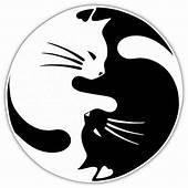 Free Shipping 8 Colors Yin And Yang Cat Pet Lover Car