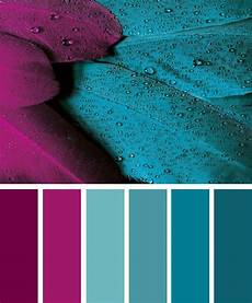 magenta and teal color inspiration color colorpalette