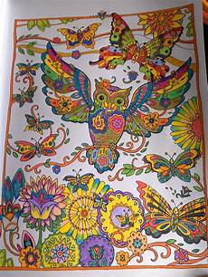pintado con lapices owl coloring pages colorful owls