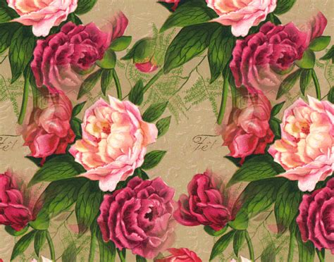 [47+] Antique Rose Wallpaper On Wallpapersafari