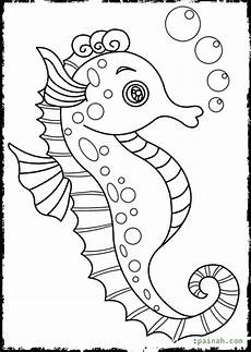 the best free seahorse drawing images from 598