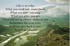 life is echo quotes for life pinterest
