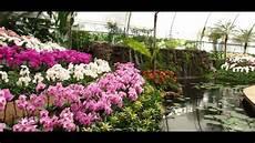 éclairage de jardin jardines de mexico mi experiencia