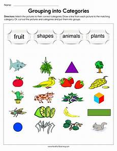 sorting and grouping worksheets 7809 resources science classification worksheets