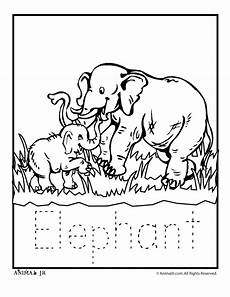 free coloring pages for zoo animals 17390 zoo animal coloring pages zoo babies zoo babies elephant classroom jr zoo animal coloring