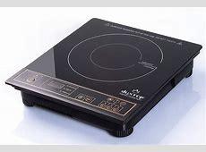 NEW DUXTOP 1800 Watt Portable Induction Cooktop Countertop