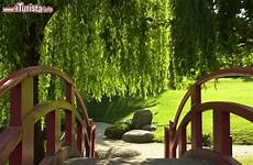 bassin de jardin avec cascade 62005 giardino giapponese a tolosa 169 ville foto tolosa