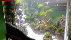 Aquascape Tebing Air Terjun Minat Order