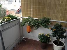 seitlicher sichtschutz balkon seitlicher sichtschutz am balkon selbst de diy forum