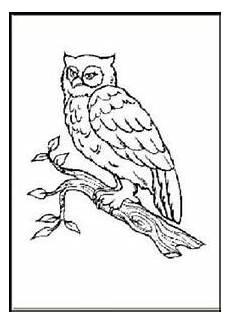 malbuch 58 malvorlagen quot tiere im zoo quot ausmalbilder als pdf