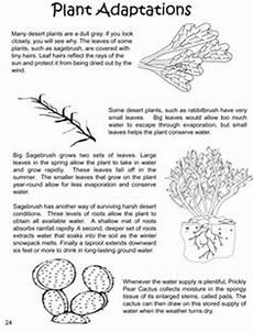 plants and animals worksheets for grade 4 13508 17 best images of adaptations worksheet for fourth graders 4th grade science worksheets