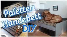 Hundebett Selber Machen - diy paletten hundebett