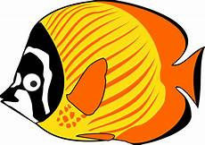 Gambar Ikan Hias Paus Hiu Kartun Lucu 187 Alihamdan