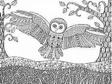Ausmalbilder Ornamente Tiere Eule Mit Vielen Kleinen Details Owl Tapestry Sketches