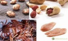 alimenti contengono lisina cibi liquidi esche ed inneschi carpfishing