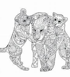 Ausmalbilder Erwachsene Kostenlos Tiere Die 20 Besten Ideen F 252 R Ausmalbilder F 252 R Erwachsene Tiere
